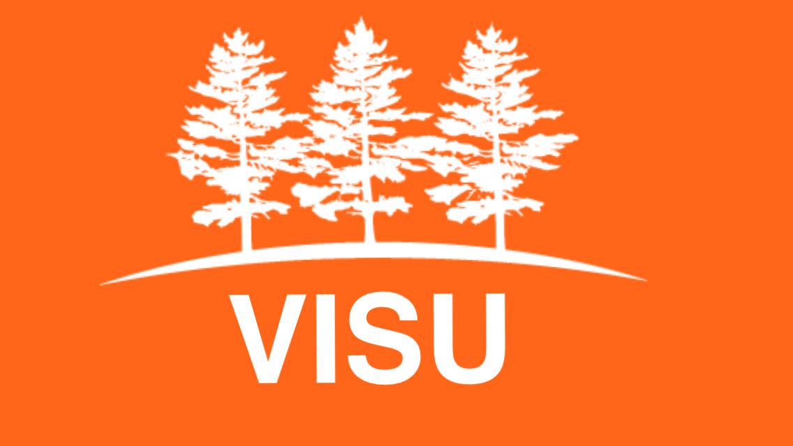 VISU logo oranssi 2017